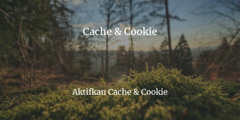 Aktifkan Cookie dan Cache